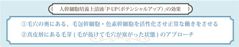 人幹細胞培養上清液「P-UP(ポテンシャルアップ)」の効果