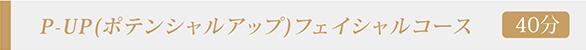 P-UP(ポテンシャルアップ)フェイシャルコース
